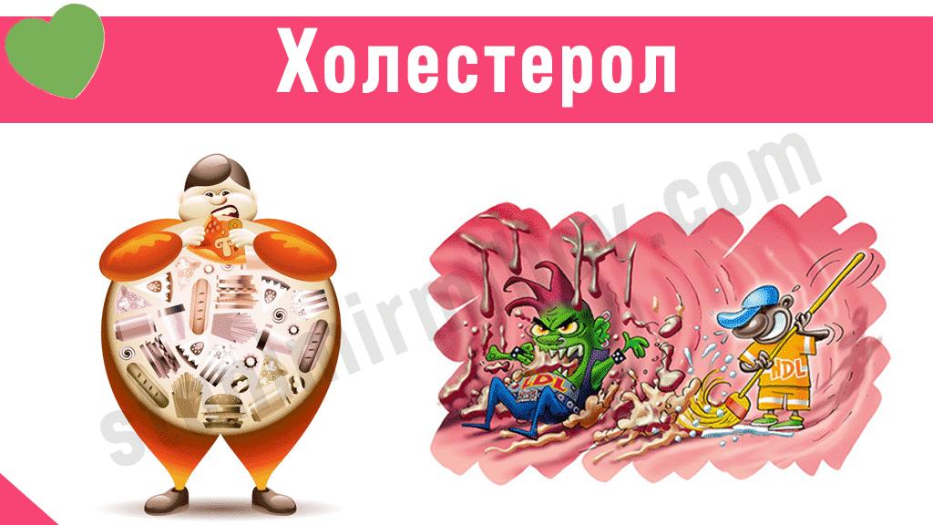 holesterol-1024x576